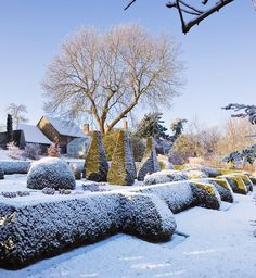 Pettifers, Oxfordshire. Garden in Winter Snow View towards the Parterre with clipped Topiary shapes Clive Nichols Garden Photography via FaceBook