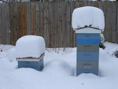 Winter Feeding, food Insurance for your hive during the cold winter months. Honey Bee Candy recipe. Always remembering that beekeepers would, ideally, like to be able to winter our bees without supplemental feeding. Liquid feeders, especially in cold temperatures, can potentially do harm by chilling your bees.