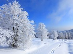 Winter desktop wallpaper Full HD - New Pictures wallpaper, hd wallpaper Cheap Party Decorations, I Love Snow, New Wallpaper, Winter Is Coming, Winter Scenes, All Pictures, Amazing Pictures, Winter Time, Night Skies