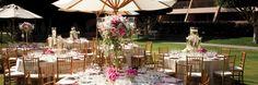 Phoenician Wedding Lawn