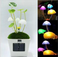 Solar Light Up Mushroom Lamps | Greatest Stuff On Earth