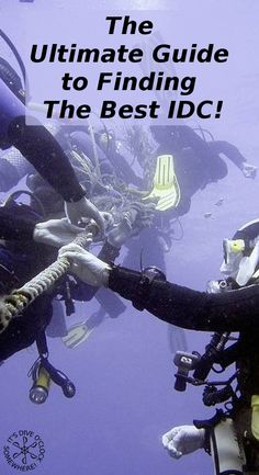 The Ultimate Guide to Finding The Best IDC!  Are you a PADI Divemaster wondering where to do your IDC (Instructor Development Course) to become a Dive Instructor? Do you want to know where you can find the best teachers, dive centers and prices?   http://www.diveoclock.com/blog/IDC/  Dive o'clock!  scuba | scubadiving | underwater | diving | scubadive | padipro | divetheworld | scubadiver | diveinstructor |  duiken | tauchen | under the sea | duikinstructeur | duikopleiding | diving |