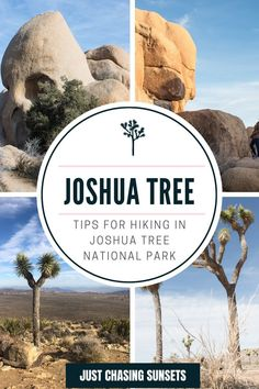 Check out this guide for awesome hikes in Joshua Tree National Park. Hiking is one of the best things to do in Joshua Tree, so make sure you read this post for all of the details! California Travel Guide, California Destinations, Beautiful Places To Visit, Cool Places To Visit, Joshua Tree National Park, National Parks, Travel For A Year, Hiking Tips, Best Hikes