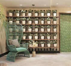 WALL DECOR IDEA - Create A Grid Of Planters On A Shelving Unit For A Contemporary Plant Wall
