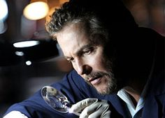 William Petersen as Gill Grissom from CSI