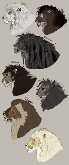 The gentlemen of the Achidar pride. by NadiavanderDonk.deviantart.com on @deviantART