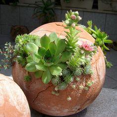 Sphere rocky garden by TikaCeramics on Etsy, €45.00