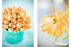 apricot tulips #charleston #wedding #summer