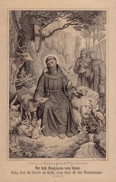 Saint Francis of Assisi the Patron Saint of Animals