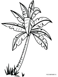 Palm Tree Coloring Page Elegant Palm Tree Beach Drawing at Getdrawings - Modern Fall Leaves Coloring Pages, Hulk Coloring Pages, Beach Coloring Pages, Leaf Coloring Page, Coloring Pages For Boys, Adult Coloring, Colouring, Tree Drawing For Kids, Palm Tree Drawing