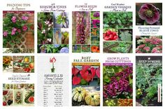 Empress of Dirt free printables covering a range of topics for home and garden management and DIY projects.