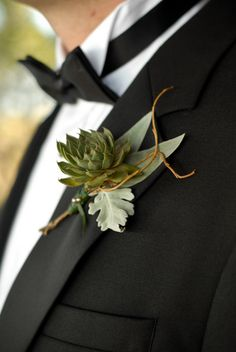 boutonniere with succulents, dusty miller and curly willow snippets