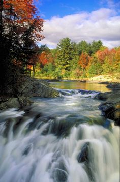 5 Family Friendly Hikes at Ontario Parks Beautiful Sites, Beautiful Places, Ontario Provincial Parks, Places To Travel, Places To See, Ontario Parks, Ontario Travel, Canadian Travel, Outdoor Life