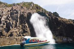 Bruny Island Cruises provides award-winning wilderness cruises in Robert Pennicott's yellow boats. Day tours to Bruny Island available from Hobart, Tasmania. Hobart Australia, Bruny Island, Island Cruises, Island Tour, Adventure Tours, Cruise Travel, Day Tours, Beautiful Islands, Tasmania