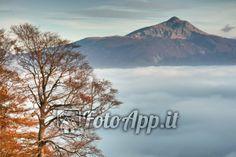 Il monte Cusna sorge, come un'isola, dal mare di nuvole