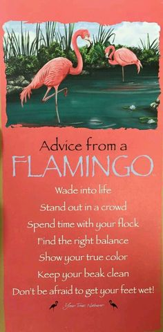 Flamingo Stand Tall Darling Print Amp Canvas Stand