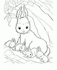Rabbit coloring sheets - These free printable coloring sheets of farm animals are fun for kids. Many coloring sheets and pictures in this section. Family Coloring Pages, Coloring Pages For Girls, Coloring Pages To Print, Free Printable Coloring Pages, Coloring For Kids, Colouring Pages, Coloring Sheets, Coloring Books, Mandala Coloring
