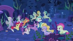 90 Mlp Terramar Ideas My Little Pony Pony Mlp Her initial appearance is in friendship is magic, part 1 as a cameo. 90 mlp terramar ideas my little pony
