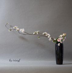 sakura, vase, ikebana