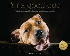 Pitbull Terrier I'm a Good Dog by Ken Foster - Filled with inspiring stories and photographs, this heartfelt tribute to the pit bull celebrates one of America's most popular yet misunderstood dogs. Perhaps more than any other breed, the pit. American Staffordshire Terriers, Perros Pit Bull, Pitbulls, Amstaff Puppy, Staffy Dog, Dogs Pitbull, Pitbull Photos, Dog Books, Animal Books