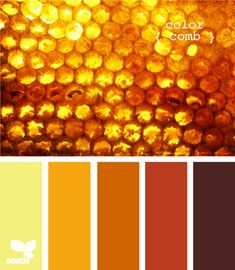 honeycomb color - design seeds: this site is awesome! Colour Pallette, Colour Schemes, Color Combos, Color Palate, Color Concept, Color Bordo, Honey Colour, Design Seeds, Mellow Yellow