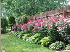 Simple and easy backyard landscaping ideas 63