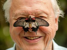 Sir David Attenborough. My hero. Nothing he has ever done has been anything short of totally brilliant.