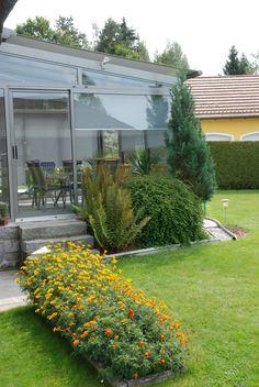 Garden Leave, Gardening Zones, Winter Vegetables, Gardening Supplies, Easy Garden, Raised Garden Beds, Winter Garden, Garden Projects, Exterior