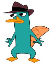 Platypus day is March 2nd!! Time to celebrate!