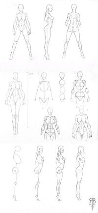 female body shapes by Rofelrolf