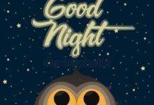 Gute Nacht Bilder Eule Gute Nacht Bilder Gute Nacht Bilder Eule