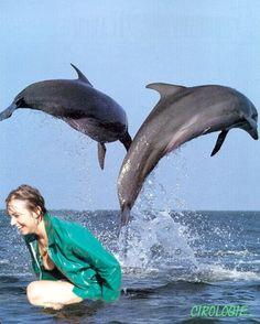 La baignade de Lilou Copyrigth : Cirologie.com/Pinterest Montages, Whale, Animals, Swim, Collages, Whales, Animales, Animaux, Animal