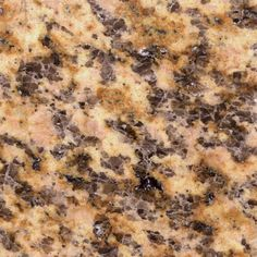 Pegasus 4 in. x 4 in. Montesol Granite Sample - Existing vanity countertop