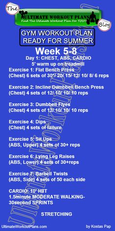 2 GYM WORKOUT PLAN READY FOR SUMMER MEN DAY 1 CHEST ABS CARDIO »…