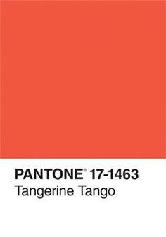 Pantone (Tangerine Tango) - color of the year 2012 Pantone Colour Palettes, Pantone Color, Colour Pallete, Color Schemes, Tango, Pantone Orange, Colour Board, Color Stories, Color Of The Year