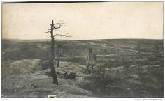 WWI, desolate landscape