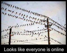 Online lol