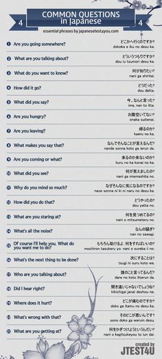 Infographic: common questions in Japanese part 4. http://japanesetest4you.com/infographic-common-questions-japanese-part-4/