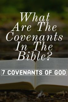 Prayer Scriptures, Bible Teachings, Bible Prayers, Bible Verses, Bible Study Tips, Scripture Study, Bible Lessons, Morning Scripture, Covenant Theology