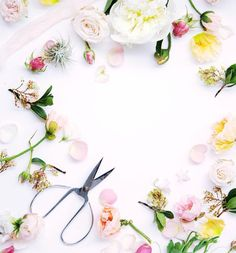 Playing with scraps #mywhitetable #flatlay  #flowers #floralfix #flowersofinstagram #floral #pretty #thatsdarling #allthingsbotanical #flowerslovers  #florist #blooms #calledtobecreative #mybeautifulmess #livecreatively #flashesofdelight #photosinbetween #lovelysquares #pursuepretty #scissors #whitetable  #freshie #manly #warringah #northernbeaches #northernbeacheslocal #freshwater