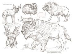 Creature Spot - The Spot for Creature Art, Artists and Fans Curious Creatures, Alien Creatures, Fantasy Creatures, Animal Sketches, Animal Drawings, My Drawings, Creature Feature, Creature Design, Character Art