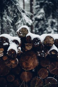 Voor alle mensen die de winter de fijnste tijd van het jaar vinden - Roomed