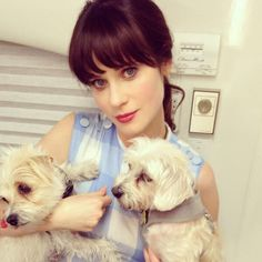 Zooey Deschanel reportedly pregnant with second baby. Zooey Deschanel is pregnant with her second child with husband Jacob Pechenik, Us Weekly confirms. Zooey Deschanel Family, Zoey Deschanel, Chelsea Handler, Rachel Bilson, Charlize Theron, Rescue Dogs, Animal Rescue, Celebrity Dogs, How To Cut Bangs