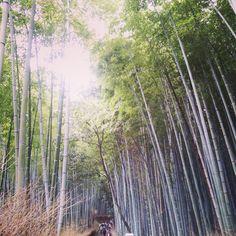FACEBOOK= https://www.facebook.com/wabisabi.mode.hokkaido/   #visitjapan  #日本
