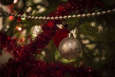 Christmas decoration on the tree by svetikart on @creativemarket