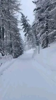 Winter Scenery, Winter Theme, Beautiful Photos Of Nature, Beautiful Places, Alaska Winter, Snow Cabin, Snow Forest, Love Background Images, Anime Girl Drawings