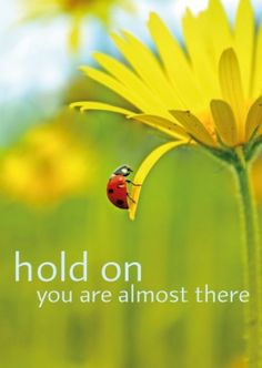 Kaart hold on you are almost there