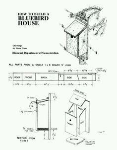 Birdhouse Plan For Pj