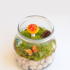 A great summer DIY activity for kids of all ages - make a cute mossy terrarium in a jar. They'll love making them and displaying them too.