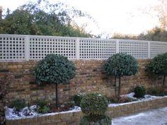 Trellis above brick privacy fence
